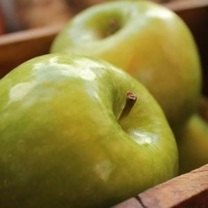 Bramley Apple Week